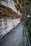 Hunan Zhangjiajie lasu państwowego parka Yangjiajie Wulongzhai deski droga Obraz Royalty Free