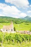 Hunawihr,阿尔萨斯,法国 免版税库存照片