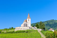 Hunawihr, Alsace. Church with vineyard, Hunawihr, Alsace, France Stock Image