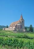 Hunawihr Alsace, Frankrike Fotografering för Bildbyråer