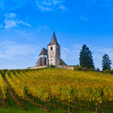 Hunawihr, Alsace Vineyard, France Royalty Free Stock Photography