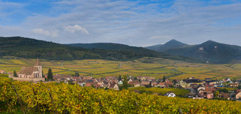 Hunawihr, Alsace Vineyard, France Royalty Free Stock Photos
