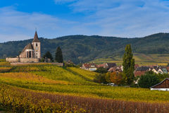 Hunawihr, Alsace Vineyard, France Royalty Free Stock Photo