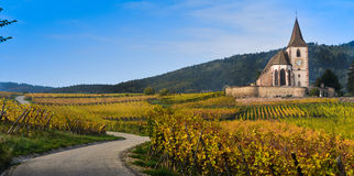 Hunawihr, Alsace Vineyard, France Royalty Free Stock Images