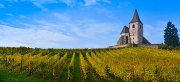 Hunawihr, Alsace Vineyard, France Stock Photos