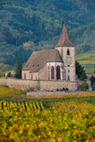 Hunawihr, Alsace Vineyard, France Stock Images