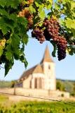 Hunawihr, de Elzas, Frankrijk Stock Foto's