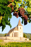 Hunawihr, Elsass, Frankreich Stockfotos