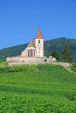 Hunawihr, l'Alsazia, Francia Immagine Stock Libera da Diritti