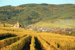 Hunawihr in the vineyard of Alsace. Landscape of the wonderful Alsatian vineyard Stock Photo