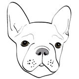 Hund vektor abbildung