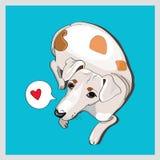 Hund auf blauem Hintergrund Lizenzfreies Stockfoto