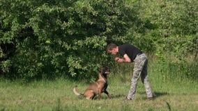 Hund bellt auf einem Mann mit Ball stock footage