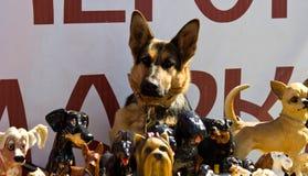 Hund bland leksaker Arkivbilder