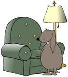 Hund, der auf einem Stuhl pinkelt Stockfotos