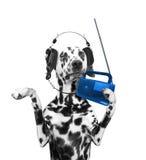 Hund, der auf Musik und das Tanzen hört Stockfotografie