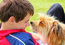 Hund, der das Jungengesicht schnüffelt stockbild