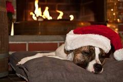 Hund, der durch Kamin schläft Lizenzfreie Stockbilder