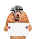 Hund, der eine leere Fahne hält Stockbilder