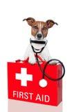 Hund der Ersten ERSTE HILFE Lizenzfreie Stockfotos