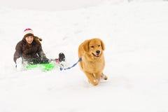 Hund, der Kind auf einem Schneeschlitten zieht Stockbild