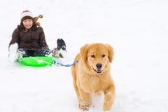 Hund, der Kind auf einem Schneeschlitten zieht Lizenzfreies Stockfoto