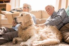 Hund, der mit älteren Paaren aufwirft lizenzfreies stockfoto