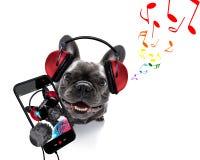 Hund, der Musik hört lizenzfreies stockfoto