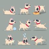 Hund in der Tagestätigkeit Tägliches Programm des lustigen Karikaturwelpen Netter Hundehaustiertier-Vektorzeichensatz lizenzfreie abbildung