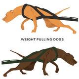 Hund, der Vektorillustration zieht Lizenzfreies Stockfoto