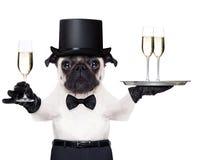 Hund des glücklichen neuen Jahres Lizenzfreie Stockfotos