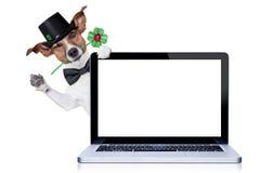 Hund des glücklichen neuen Jahres Lizenzfreies Stockbild