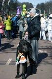Hund des irischen Wolfshunds und sein Eigentümer an der St- Patrick` s Tagesfeier in Moskau Lizenzfreie Stockfotos