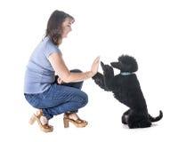 Hund, Eigentümer und Gehorsam stockfotos
