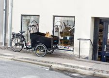 Hund in einem FahrradkorbwarteEigentümer lizenzfreie stockfotos