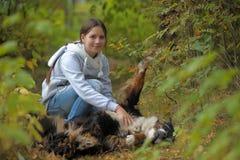 Hund för Bernese berg och tonårs- flicka för flicka Royaltyfria Foton