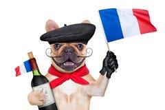 Hund för franskt vin arkivbilder
