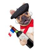 Hund för franskt vin royaltyfria bilder