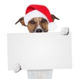 Hund för julbanerplaceholder Arkivbild