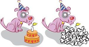 Hund för lycklig födelsedag Arkivfoto