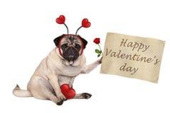 Hund för mops för dag för valentin` som s ner sitter, hållande övre pappers- snirkel, bärande diadem med hjärtor Royaltyfria Foton