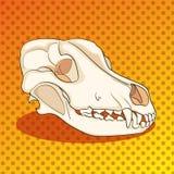 Hund för skalle för popkonst från sidan vektor för musik för bakgrundsfärgman Vektor för humorbokstilefterföljd royaltyfri illustrationer