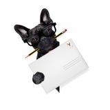 Hund för stolpe för postleverans Royaltyfri Bild