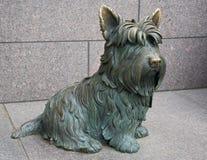 Hund Franklin-Roosvelts Stockfotos