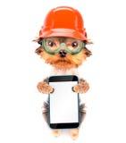 Hund gekleidet als Erbauer mit Telefon Stockfoto