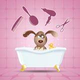 Hund i badet för att ansa vektor illustrationer