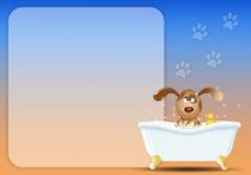 Hund i badet för att ansa stock illustrationer