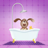 Hund i badet för att ansa royaltyfri illustrationer