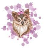 Hund i brun vektorillustration med ljusa och mörka signaler som drottningsymbol med en krona och ljust - purpurfärgad fläckbakgru arkivbilder