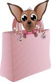 Hund i en glamorös handväska Royaltyfria Foton